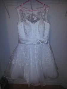 The Too Good To Be True Dress